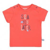 ORGANIC COTTON T-Shirt SEA - Soft Red