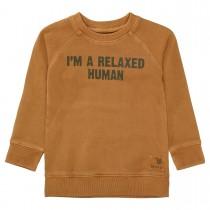 Sweatshirt mit Raglan-Ärmeln - Hazel Brown