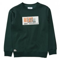 Sweatshirt NEXT - Pine Green